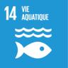 Vie aquatique Lien vers: http://coop-site.net/educdd/?ObjectifsDD&facette=checkboxListeOdd=14
